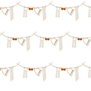 hanging laundry-rust orange
