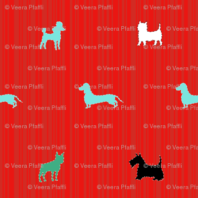 small dogs on red