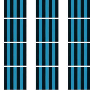 Vertical Black and Blue Stripes