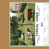 Typical Cows Calendar Tea Towel