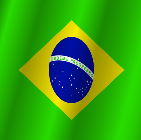 Flag of Brazil fabric by artpics on Spoonflower - custom fabric