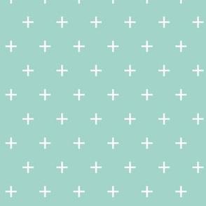 aqua cross