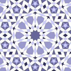 05532254 : UA5 V* : indigo blue