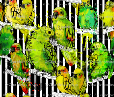 watercolor parrots and black stripes