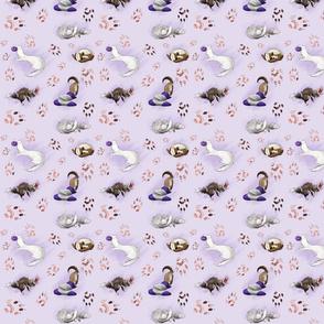Ferret Fun Purple