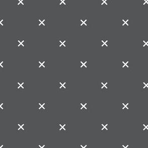 X // Pantone 179-13