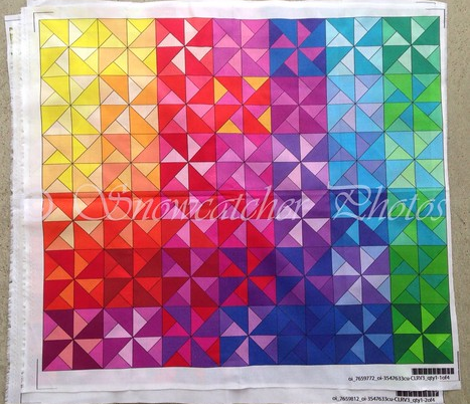 Snowcatcher Rainbow Pinwheel Panel