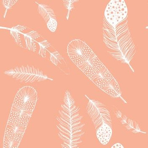 Feathers in Peach