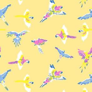 parrot_cream