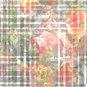 Rose Garden Plaid