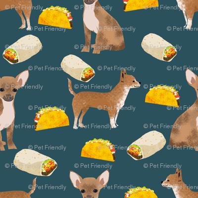 chihuahua tacos food dog burrito funny cute dog pet dog