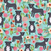 Rpitbull_flowers_mint_shop_thumb