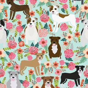 pitbull pitbull terriers cute dogs dog sweet animals florals mint dog pets