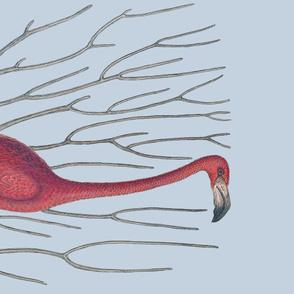 Pre-Linnean Flamingo Border Print ~ Versailles Fog
