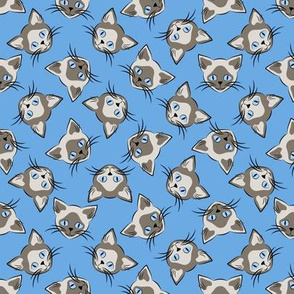 Siamese Cats on Blue