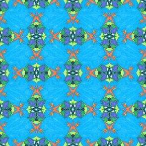 PACLA Weave