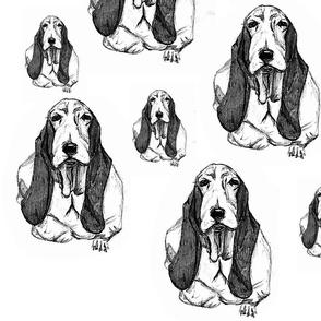Derpy Dogs