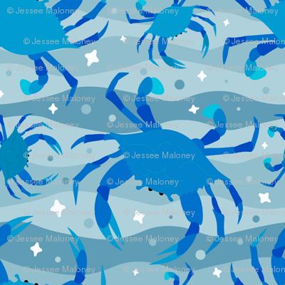 Wandering Crabs in Blue