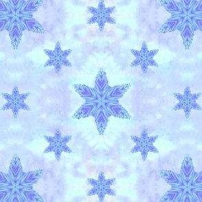 Salted_Star_Aqua