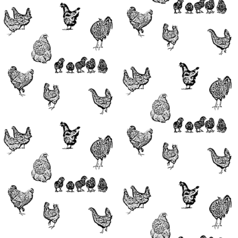 Drawn Chickens White fabric by janinez on Spoonflower - custom fabric