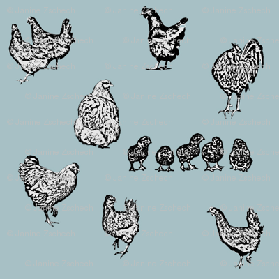 Drawn Chickens Blue