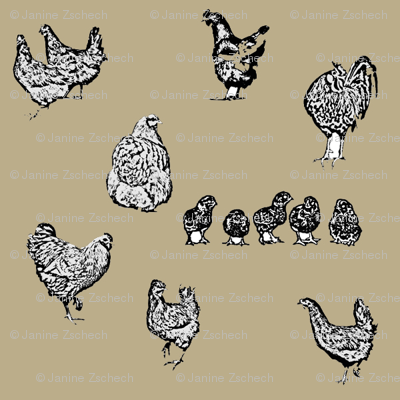 Drawn Chickens Brown Cream