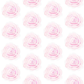 Watercolor Roses Pale, pink roses on a white background