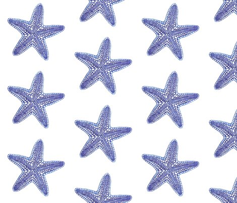 Rrrblue_starfish__e__shop_preview