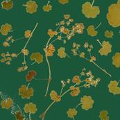 Alchemilla dark green