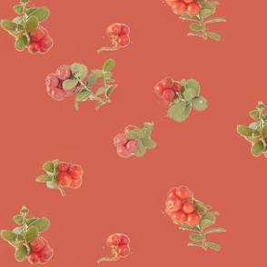 Bearberry red