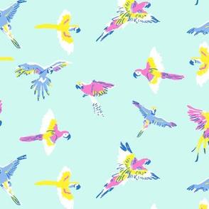 parrot_bg