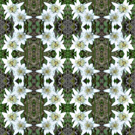 edelweiss - alpine star 1 - schweiz fabric by stofftoy on Spoonflower - custom fabric