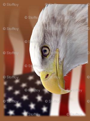 bald eagle - placemats