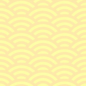 pale orange and yellow scallop