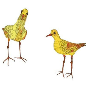 Two yellow birds