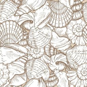 sea_shell_sim