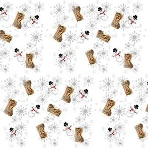 Yorkie & snow