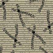 chromosome-01