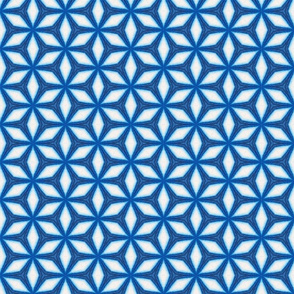 Moroccan Style Blue White Starflake