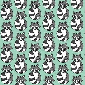 Raccoon // Mint background