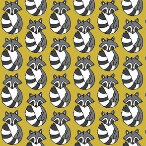 Raccoon // Mustard background