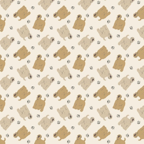 Tiny Wheaten Terriers - tan