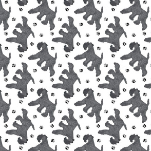 Trotting Kerry Blue Terrier and paw prints - white