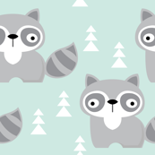 raccoons on turquoise