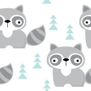 raccoons on white