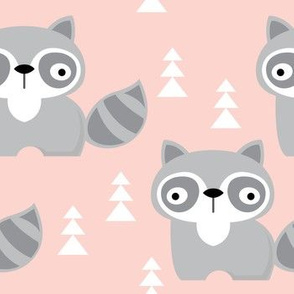 raccoons on pink