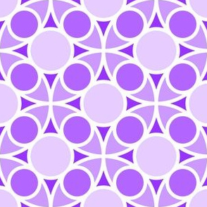 05554215 : R4 circle mix : violet mauve