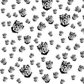 Yorkshire Terrier black white fabric