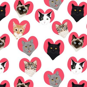 love cats hearts cute girls kitten kitty cat fabric for girls cat ladies fabric