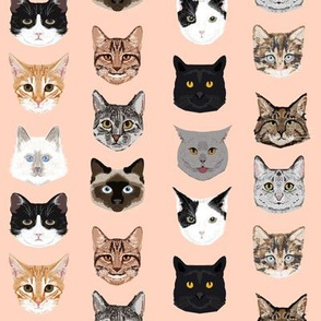 cat faces cute cats fabric sweet cats blush girls kittens siamese cat lady fabric